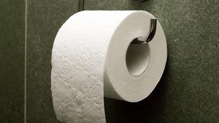 Nová chystaná hra vás zavede do života toaletního papíru.. Fuj…