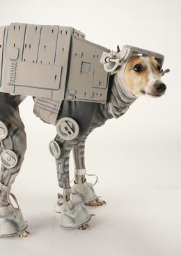 dog star wars