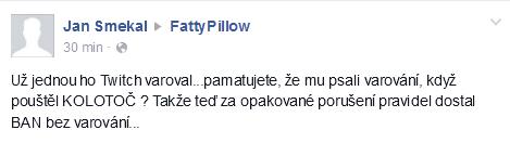 FattyPillow