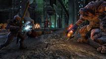 Zenimax chce The Elder Scrolls Online bez bugů