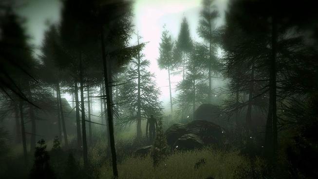 Slender: The Arrival - recenze
