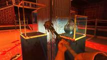 Viscera Cleanup Detail vás nechá uklízet po masakru v Shadow Warrior