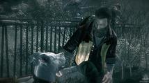 Ashen Rift je příběh o přežití muže a psa postapokalyptickém světě