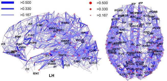 Mapa nervové sítě