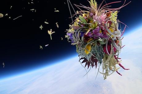 Kytice ve stratosféře