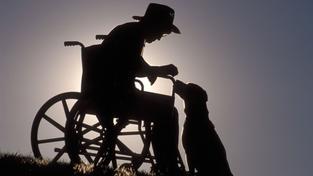Někde pomáhají čumáky psí, v tomhle případě pomohl ten vlastní