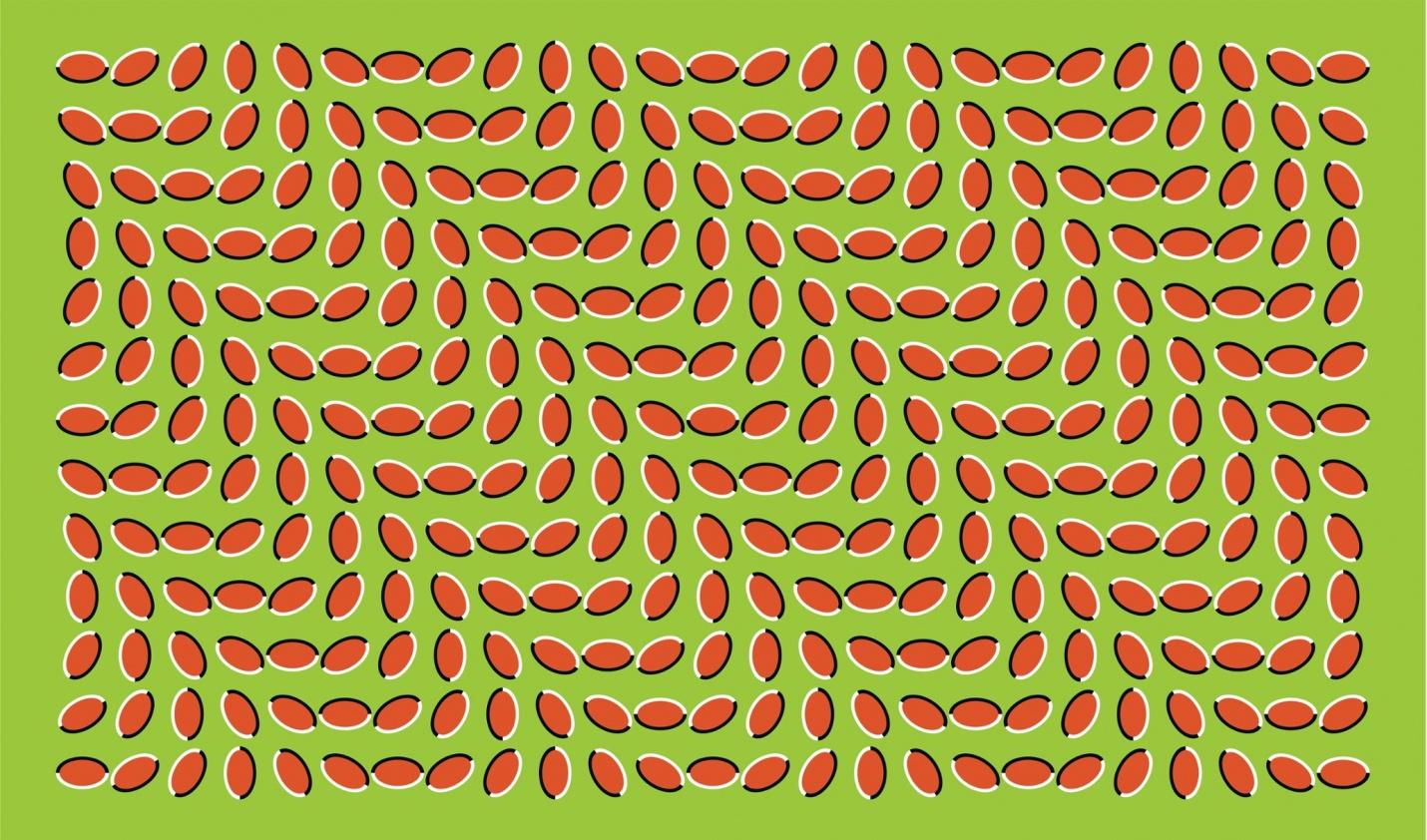 Výsledek obrázku pro optické klamy