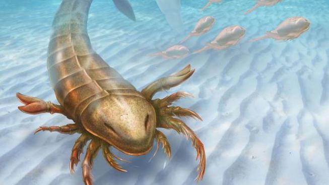 Pravěký škorpion vypadá jako mýtická příšera