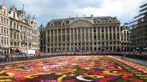 Bruselské náměstí přikryl obří koberec z begónií