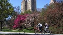 Newyorčany na cestě za sportem nic nezastaví