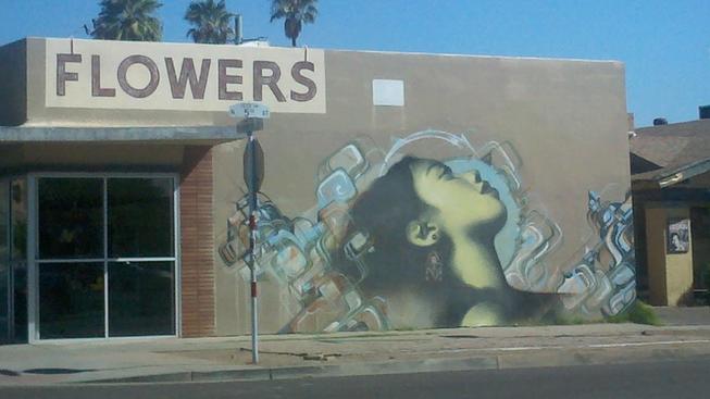 Malba ve Phoenixu