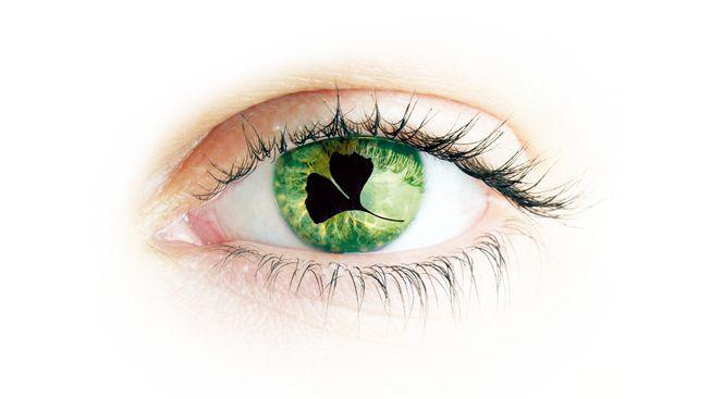 Pro správnou funkci zraku jsou klíčové živiny