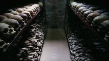 Před 20 lety skončila Rwandská genocida - pětkrát horší než holokaust