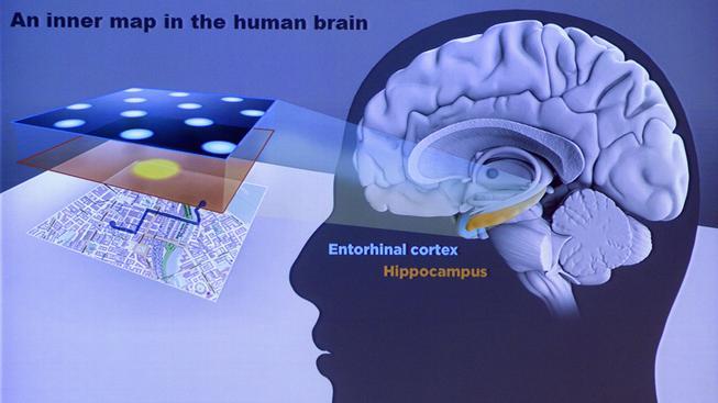 Nobelovku za lékařství získala trojice neurologů za 'biologickou GPS'