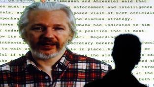 Julian Assange, tvář WikiLeaks
