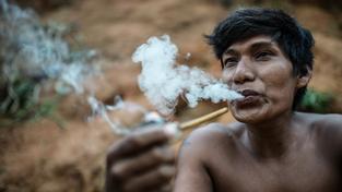 Indián kmene Guaraní kouří tradiční dýmku