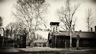 ilustrační snímek: Koncentrační tábor Osvětim
