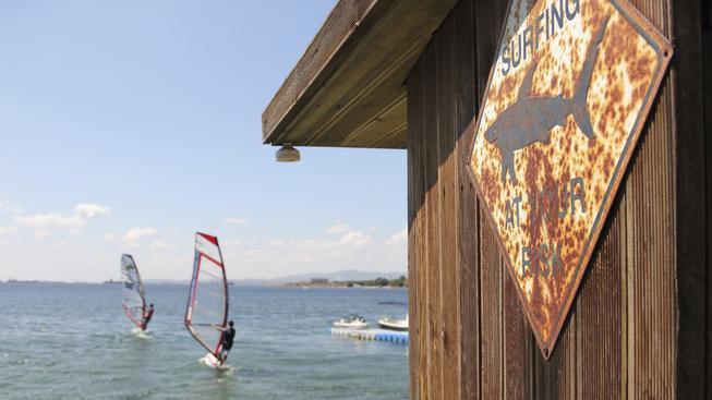 Útoků žraloků přibývá. Neútočí ale úmyslně, plavce a surfaře si pletou s potravou (ilustrační snímek)