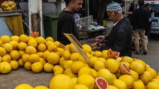 Turecko už letos vyvezlo do Ruska 255 tisíc tun citrusů (ilustrační snímek)