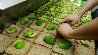Naše posedlost avokádem ničí přírodu. Ilustrační snímek