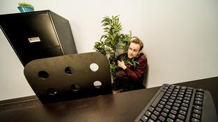 Openspace kanceláře kolektivu spíš škodí, než prospívají. Ilustrační snímek