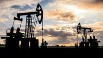 Rusko omezí těžbu ropy. Chce po ostatních totéž