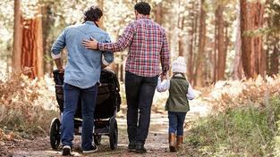 Homosexuálové si budou moci osvojit dítě svého partnera, rozhodla vláda. Ilustrační snímek