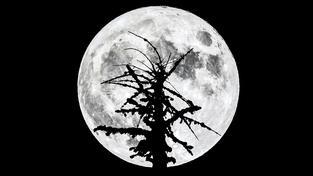 Na obloze bude Měsíc vypadat jako během běžného úplňku, jen nám bude připadat jasnější