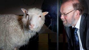 """Dolly se svým """"duchovním otcem"""" profesorem Ianem Wilmutem"""