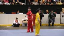 Ukázka činského bojového umění wushu