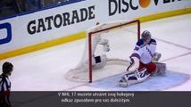 NHL 17 - vize