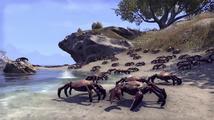 The Elder Scrolls Online - ohlédnutí E3 2016