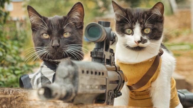 Jak to vypadá, když se spojí The Walking Dead a roztomilá koťátka
