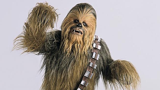 Vědci pojmenovali broučka po Chewbaccovi. Mrkněte, jak vypadá