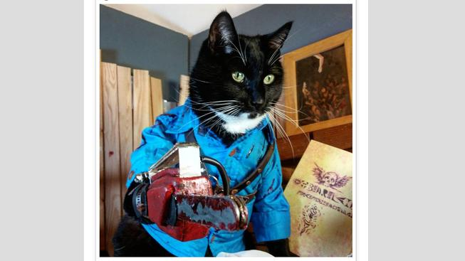 Kocour předvedl cosplay z Ash vs Evil Dead