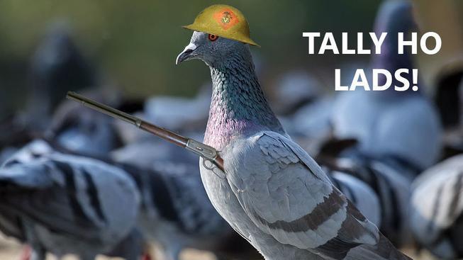 V Battlefield 1 budete moci hrát za holuba