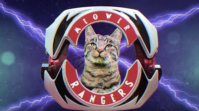 Kočičí Power Rangers jsou všechno, co dneska potřebujete
