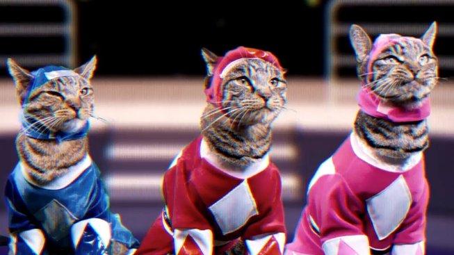 Jak by vypadali Power Rangers, kdyby je hrály kočky