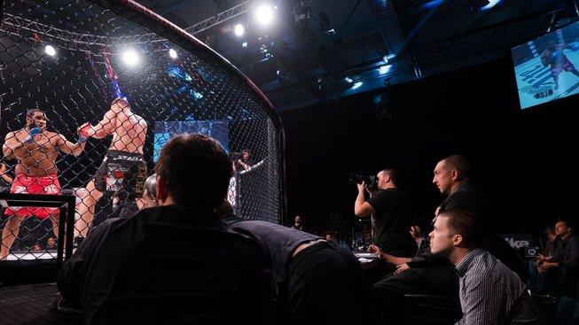 Rozhodčí UFC