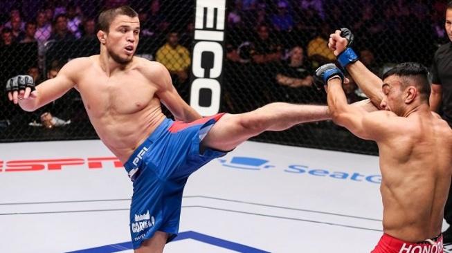 Další Khabibův bratranec bude bojovat v UFC, udrží si svou neporazitelnost?