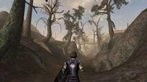 Obrázek ke hře: The Elder Scrolls III: Morrowind