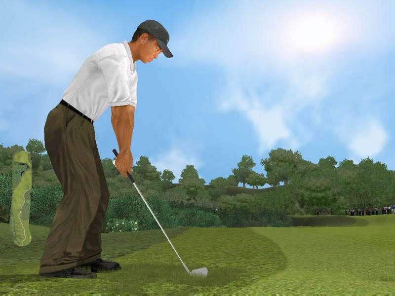 Tiger Woods PGA Tour 2002