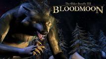 Obrázek ke hře: The Elder Scrolls III: Bloodmoon