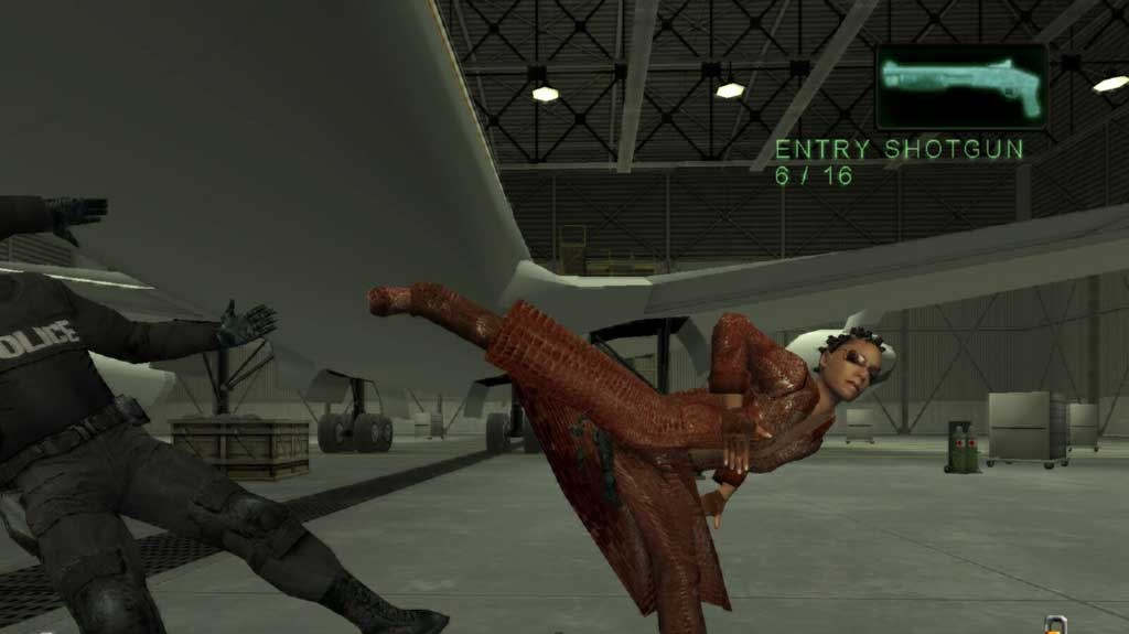 První dojmy z hraní Enter the Matrix