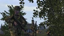Obrázek ke hře: Armed Assault