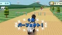 Wii Play - recenze