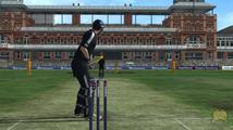 International Cricket 2010