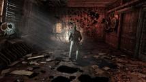 Obrázek ke hře: Silent Hill: Downpour
