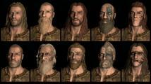 Koncepty deseti ras z Elder Scrolls V: Skyrim