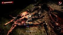 Obrázek ke hře: Dead Island